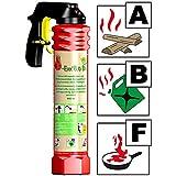 F-Exx 8.0 Bio - Der umweltfreundliche Allround-Feuerlöscher inkl. Wandhalterung (Made in Germany)